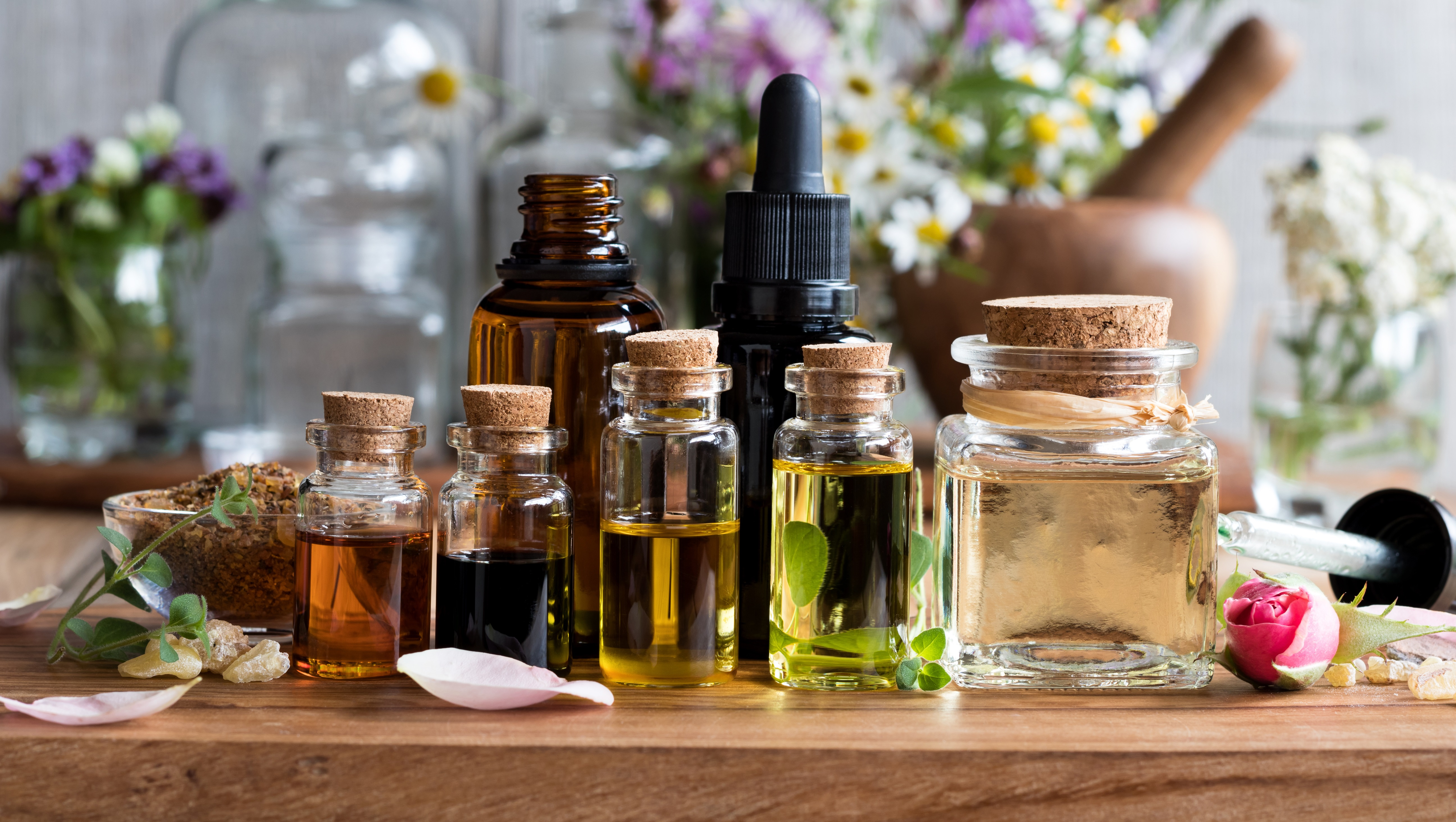 Is doTERRA better than Young Living? (full review)